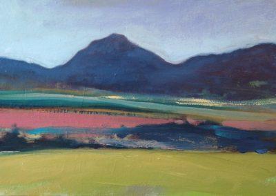 Claire Beattie, Pink Field Eildon Hills, oil on canvas, 60x30cms, 2020