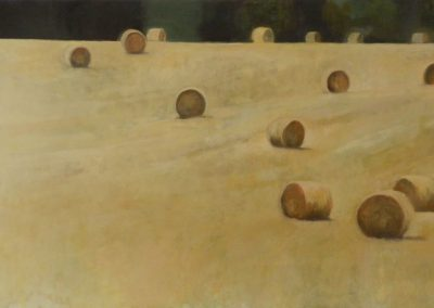 Claire Beattie, Scattered Field, oil on canvas, 107x86cms, 2014