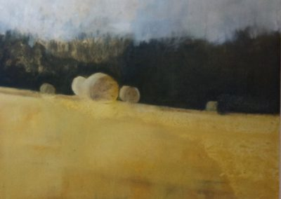 Claire Beattie, Early Morning Fawcett Wood, oil on paper, 20x30cms, 2013