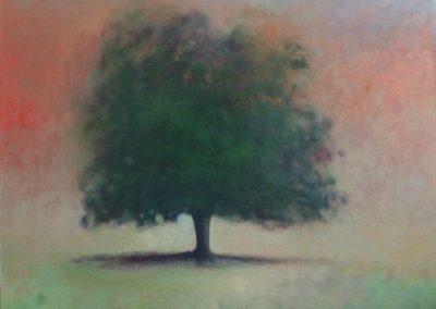 Claire Beattie, Aglow, oil on canvas, 100x100cms, 2021