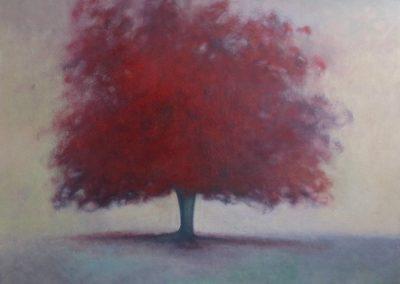 Claire Beattie, Bright Splendour, oil on canvas, 100x100cms, 2021